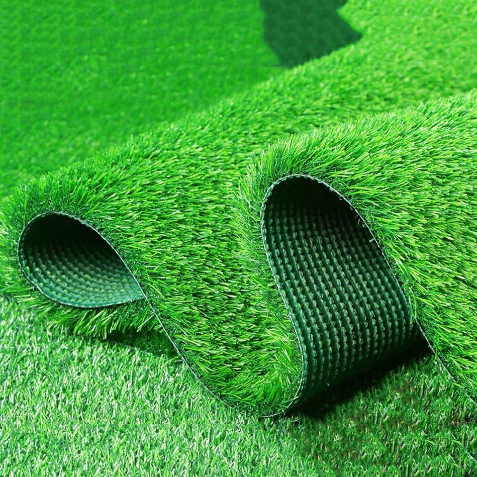 お世話になった推論統治可能現実的な人工芝ラグ,20 Mm 屋内屋外ガーデン芝生風景合成芝マット 高密度偽の草の敷物-グリーン 200x1000cm(79x394inch)
