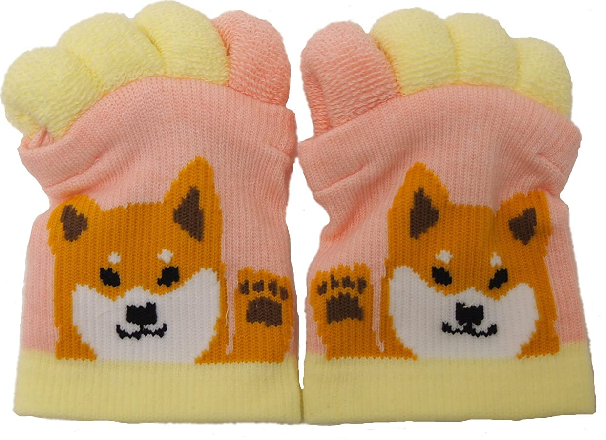 環境に優しい平野調和フレンズヒル 靴下 足指ソックス 5本指 (シバタサンPK(09))