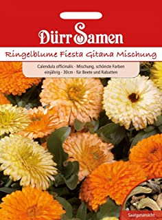 Dürr-Samen Ringelblume Fiesta Gitana Mischung