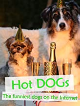 Hot Dogs - The funniest dogs on the Internet