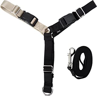 PetSafe Easy Walk Harness, No Pull Harness for Dogs, Adjustable Harness with Included Matching Lead, Available in Multiple Colors and Sizes
