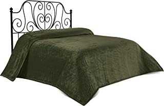 Chiara Rose Super Soft Bed Blanket Twin Size, Flannel Fleece Cozy Plush Fuzzy Lightweight Solid Double Bed Throw Green