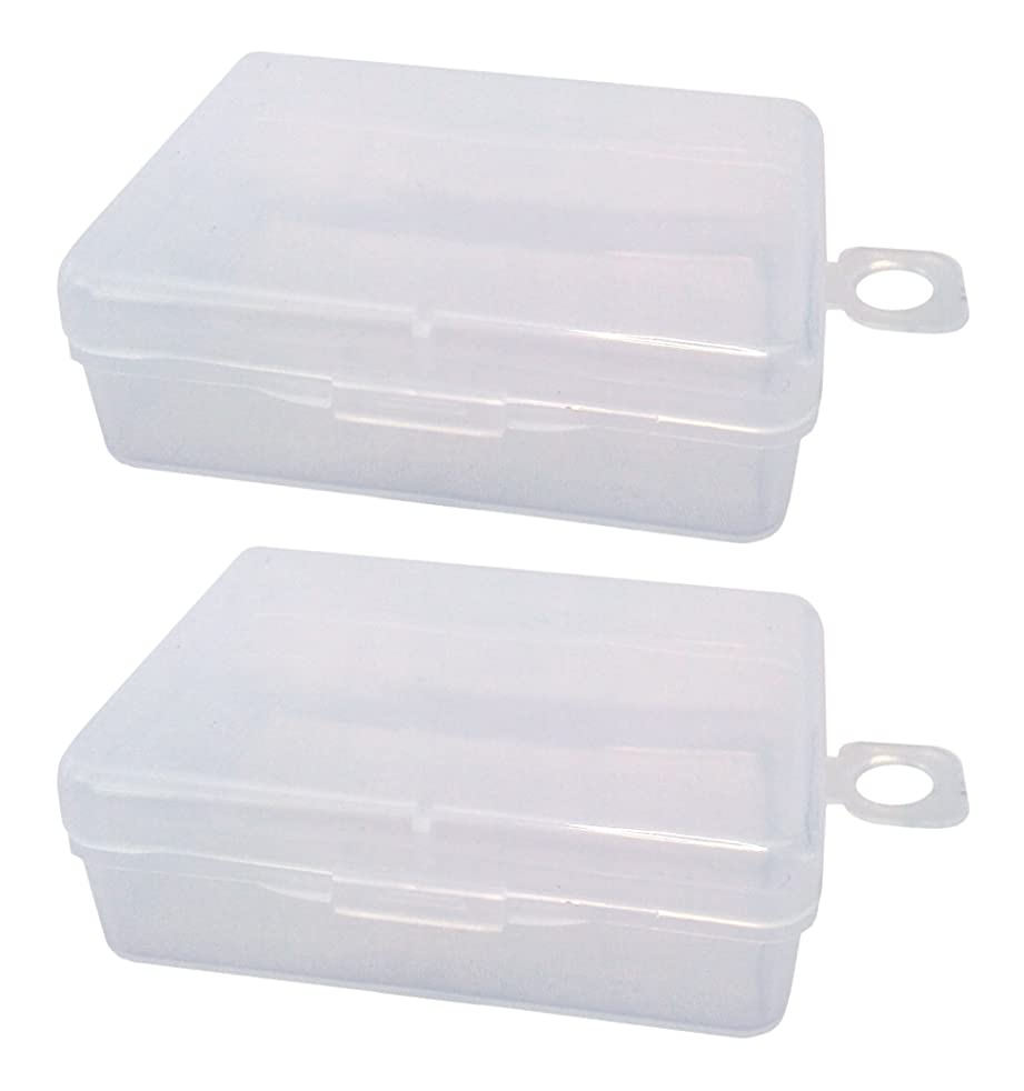 Green Leaf Small Plastic Box Organizer 2 Pack