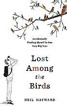 Best big bird lost Reviews