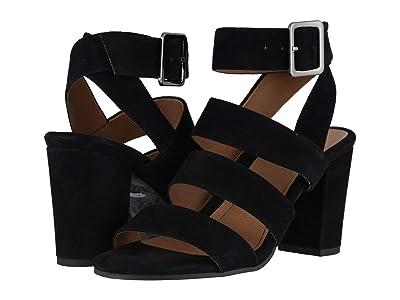 VIONIC Blaire Suede (Black) High Heels