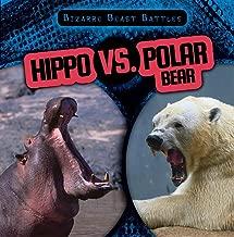 Best rhino vs bear Reviews