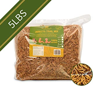 diig Non-GMO Dried Mealworms/Crickets/Black Soldier Fly - Treats for Birds Chickens Hedgehog Hamster Fish Reptile Turtles (5 lb, Treat Mix)