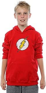 DC Comics Boys Flash Distressed Logo Hoodie