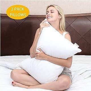 Best symphony standard pillow Reviews