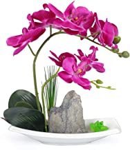 YOBANSA Decorative Real Touch Silk Orchid Bonsai Artificial Flowers with Imitation Porcelain Flower Pots Phalaenopsis Fake Flowers Arrangements for Home Decoration (Deep Purple)