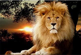 Best simple lion painting Reviews