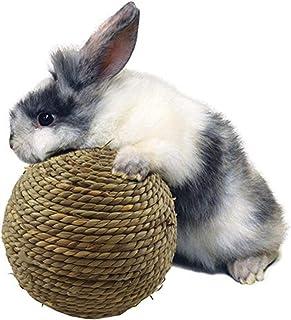 sfadf Kauwballen, kleine dieren, kauwspeelgoed, hazen kauwspeelgoed, cavia's, speelgoed, natuurgrasbal voor tandreiniging,...