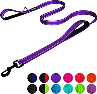 DOGSAYS Dog Leash 6ft Long - Traffic Padded Two Handle - Heavy Duty - Double Handles Lead for Training Control - 2 Handle Leashes for Large Dogs or Medium Dogs - Reflective Pet Leash Dual Handle