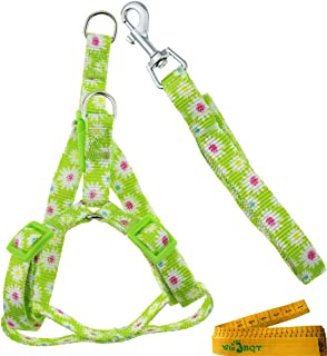 Wiz BBQT Adjustable Breakaway Flower Printed Dog Cat Pet Harness and Leash Set for Dogs Cats Pets