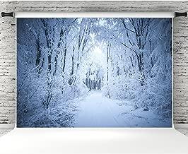 Best background winter photos Reviews