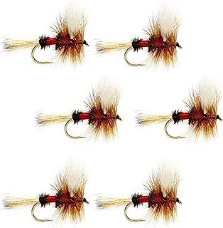 1 Dozen 12 Royal Wulff size 14 dry flies