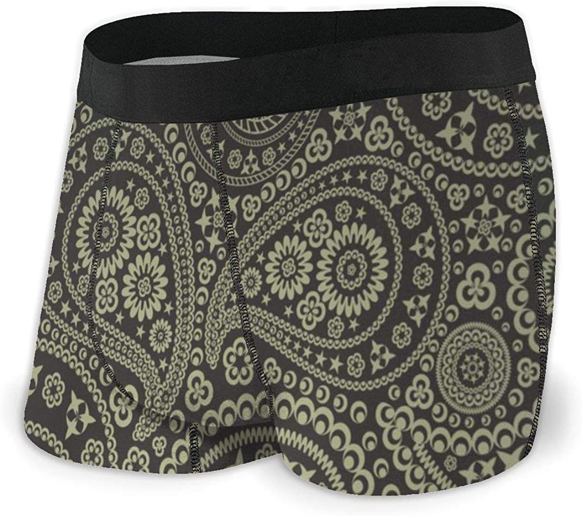 Randolph Wordsworth Mens Boxer Briefs Star Paisley Pattern Breathable Underwear