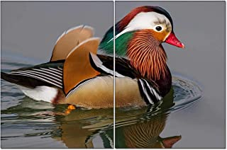 Set of 2,Canvas Prints Picture,Mandarin Duck Swimming On Lake Modern Giclee Canvas Prints Stretched Artwork Nice Paintings for Home Office Decorations Wall Decor 8