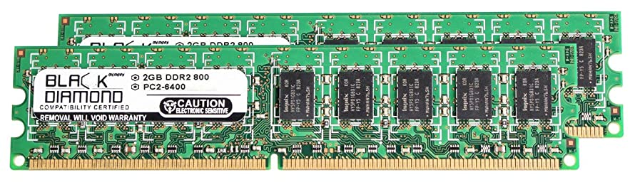 4GB 2X2GB RAM Memory for Lenovo ThinkServer TS100 6433, TS100 6434 DDR2 UDIMM 240pin PC2-6400 800MHz Black Diamond Memory Module Upgrade