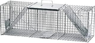 Best cheap cat traps for sale Reviews