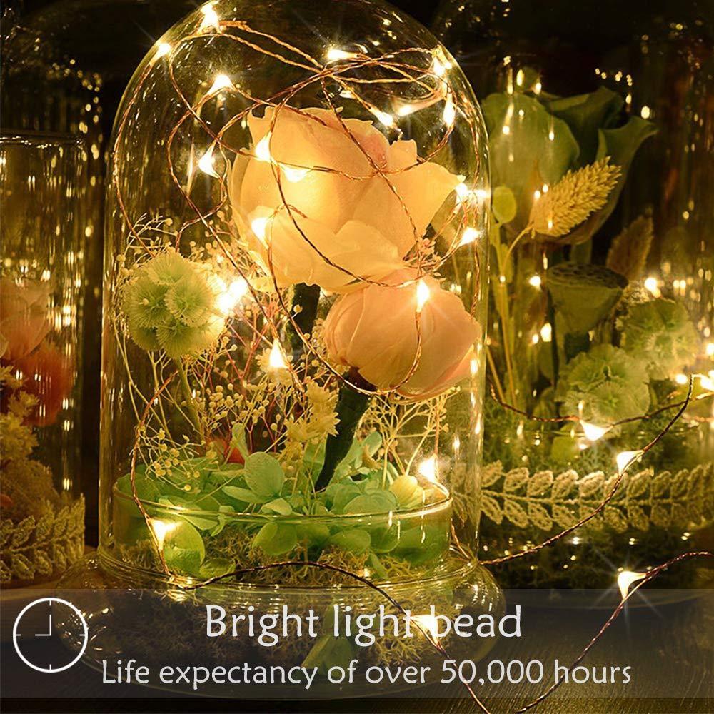 Vegkey Cadena de Luces,5M 50 Leds Luces de Cadena LED 8 Modos ...