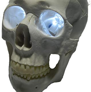 24 inch, Battery Operated, White Led Eyes for Masks, Skulls and Halloween Props
