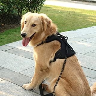 SHUNAI No Pull Dog Harness Pet Vest, Walking Dog Harness, Adjustable & Breathable Design, Great fit for Poodle,Bulldog,Labrador,Golden Retriever,Husky,Bulldog,Shepherd Dog and More(Not Include Leash)