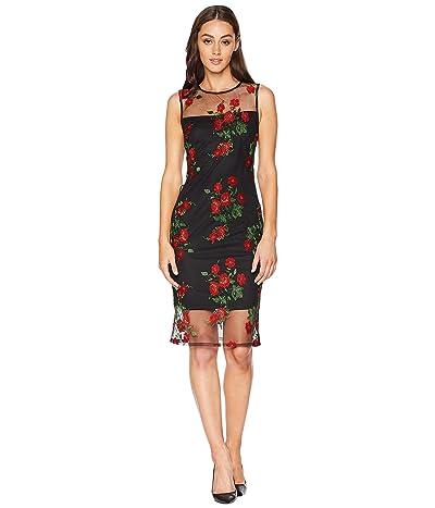 Calvin Klein Embroidered Flower Lace Sheath Dress (Black/Red Multi) Women