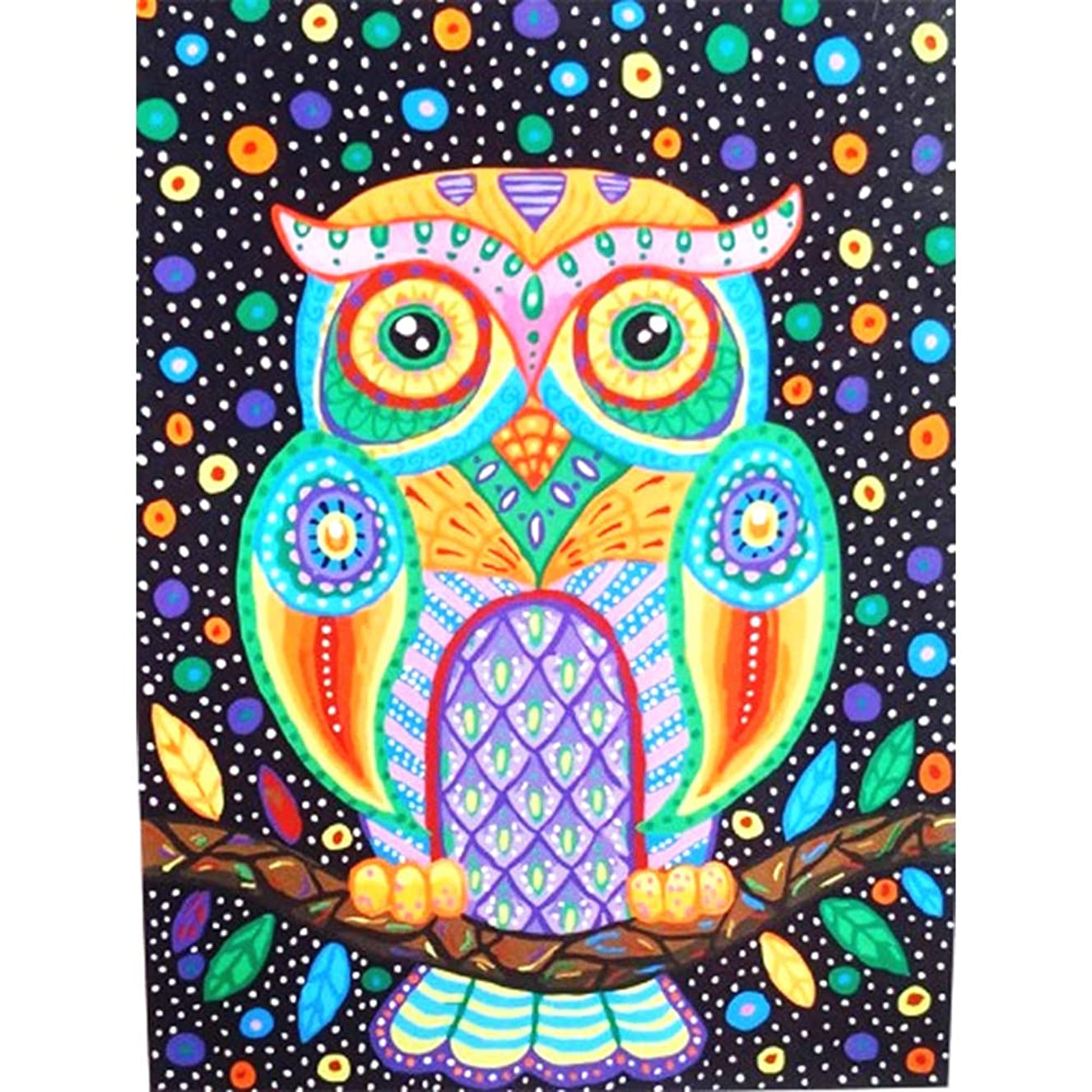 HuaCan Diamond Painting DIY 5D Full Round Drill Crystal Rhinestone by Number Kits Embroidery Pictures Arts Craft for Home Wall Decor Owl 30x40cm