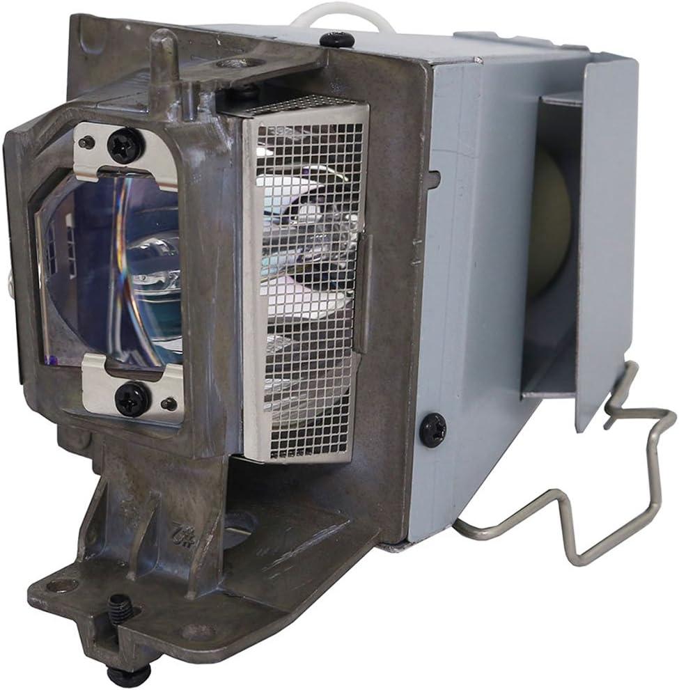 SpArc Platinum for NEC NP40LP Projector Lamp with Enclosure (Original Philips Bulb Inside)