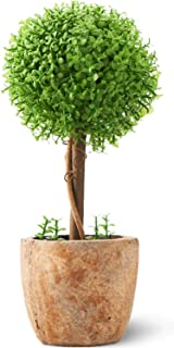 【Amazon.co.jp限定】観葉植物 光触媒 キレイな空気を実感 人工 フェイクグリーン