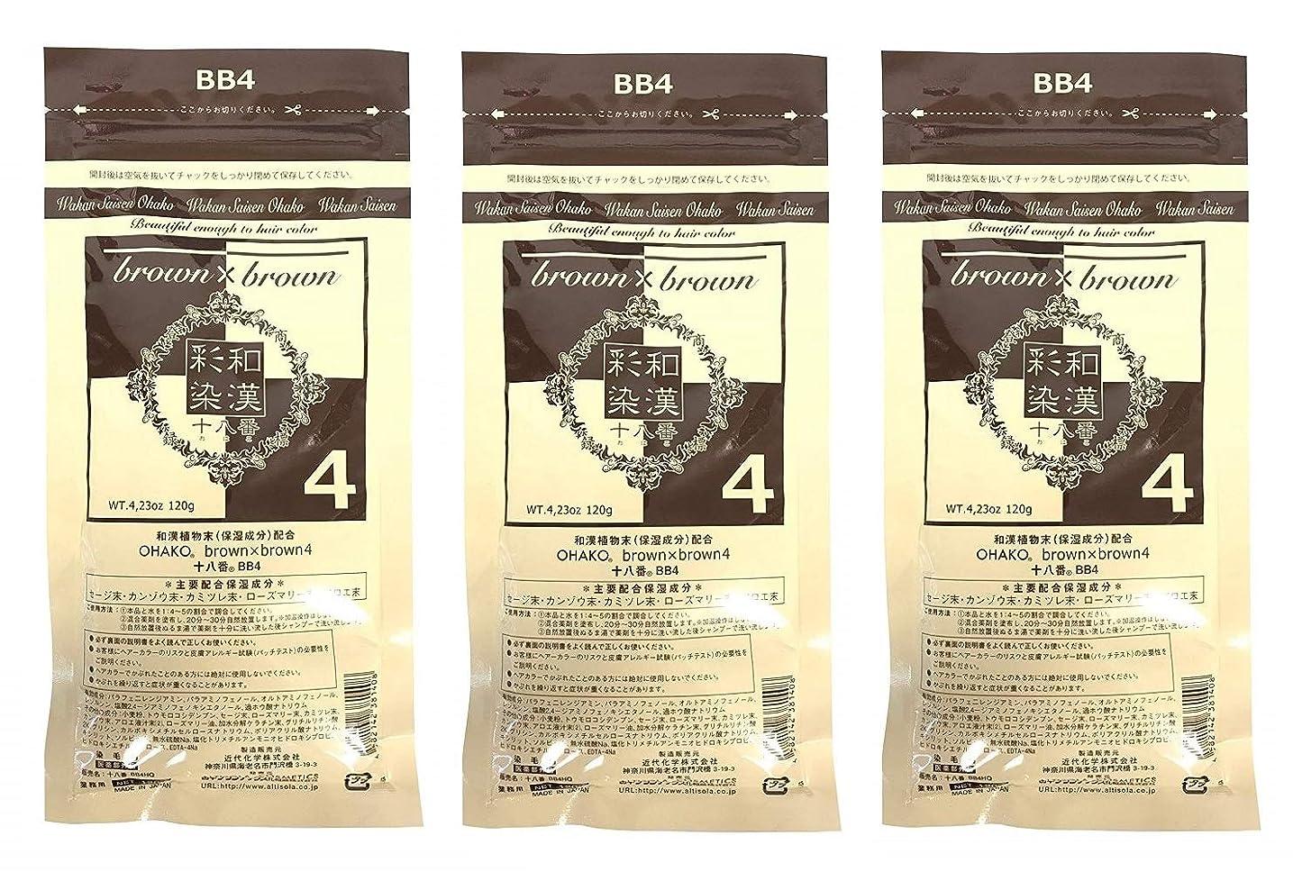 国内のパーティションコジオスコ【3個セット】グランデックス 和漢彩染 十八番 120g BB4