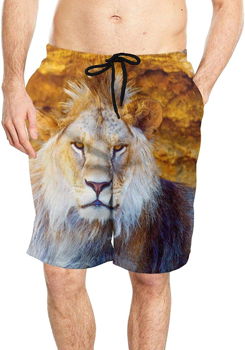 DASMUS Lion in The Sunshine Mens Quick Dry Beach Board Shorts Swim Trunks with Mesh Lining