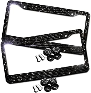 Best double license plate holder Reviews