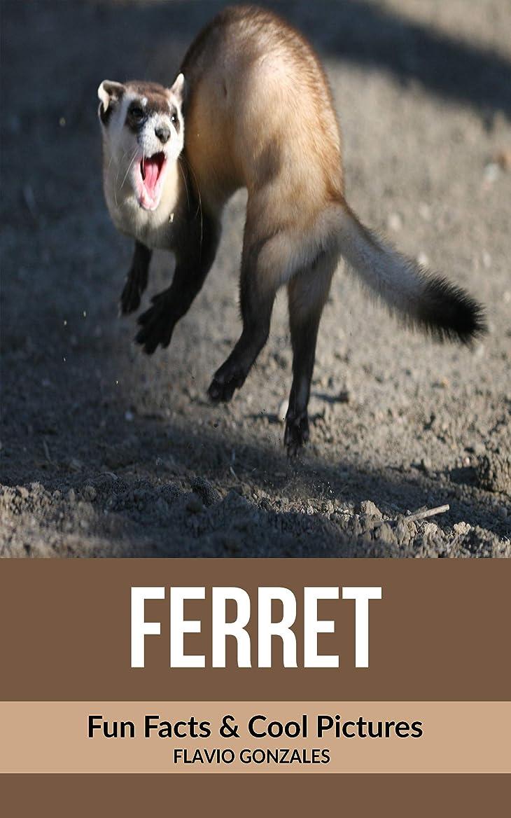 スロベニア鏡哲学者Ferret: Fun Facts & Cool Pictures (English Edition)