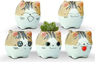 VanEnjoy Original Design Handmade Mini Cute Cartoon Ceramic Succulent Pots Planters Cat, with Drainage Hole, Flower Pot, Ceramic Ornaments Cat Gifts for Cat Lovers Office - Pack of 5