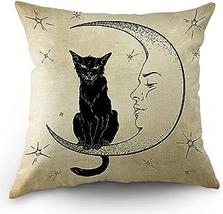 Best black cat pillow Reviews