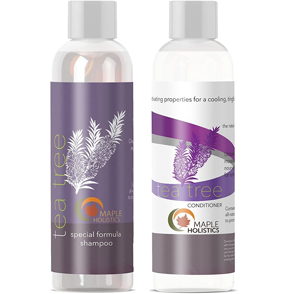 Tea Tree Oil Shampoo and Hair Conditioner Set - Natural Anti Dandruff Treatment for Dry and Damaged Hair - Best Gift Bundle for Men and Women - Sulfate Free & Safe for Color Treated Hair - USA Made