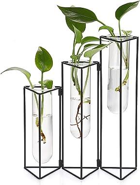 SUMTree Blumenvase aus Glas und Metall 3 Gitter Reagenzglas Pflanzenhalter Glasvase für Zuhause Café Zimmer Tisch Party Hochz
