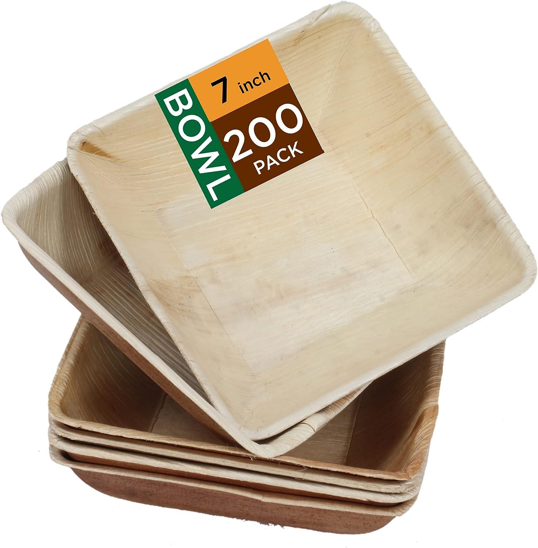 Raj Palm Leaf Plates Animer and price revision 7