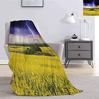 Luoiaax Nature Bedding Fleece Blanket Queen Size Majestic Summer Storm Just About to Start Blowing in The Wind Over Meadow for Living Room Bed or Couch Blanket W51 x L60 Inch Yellow Purple Green