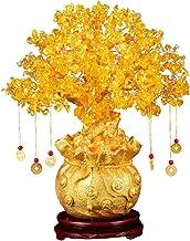 Garneck Feng Shui Citrine Money Tree Natural Crystal Bonsai Style Money Tree Lucky Tree Feng Shui Money Tree with Wealth C...