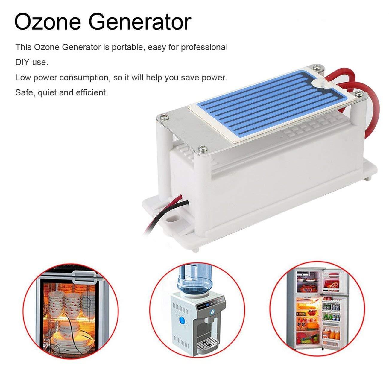 220 V Mini Generador de ozono integrado de cerámica Ozonizador ...