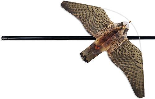 Mejor valorados en Control de aves & Opiniones útiles de nuestros ...