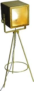 Yosemite Home Decor PFL2328-1BP 1 Light Floor Lamp, Brass Plate