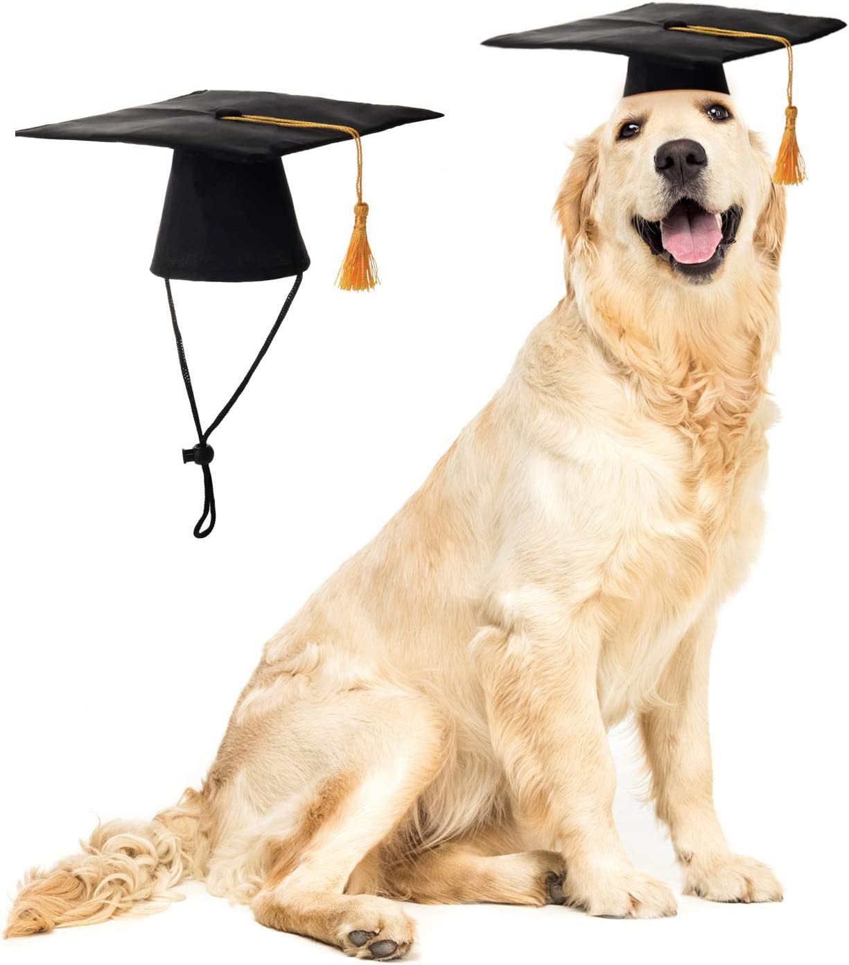 LKEX Pet Graduation Be super welcome Caps Small Outlet SALE Yellow T with Hats Dog
