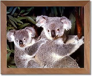 Koala Bear Mother and Baby Cub On Tree Animal Wildlife Wall Picture Honey Framed Art Print