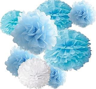 Best light blue wedding decorations Reviews