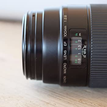 Canon EF 100mm f/2.8 Macro USM Fixed Lens for Canon SLR Cameras - International Version