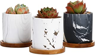 Greenaholics Succulent Plant Pots - 3 Inch Cylinder Mabble Ceramic Planter for Cactus, Succulent Planting, with Drainage Hole, Bamboo Trays, Set of 3